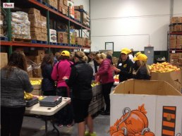 FoodLinkGroup2